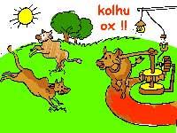 Kolhu Ox